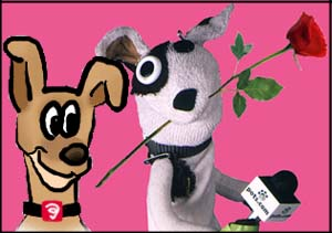 sock puppet love is in the air